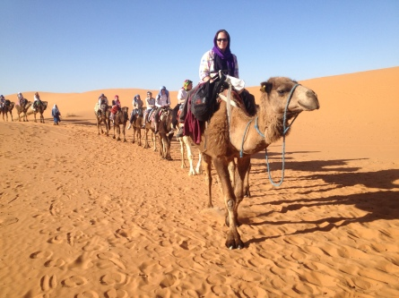 Geographers experience Marrakesh and Sahara