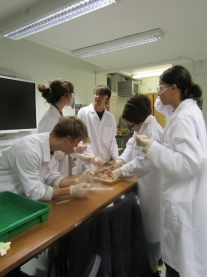 Bedales Biology Week 1
